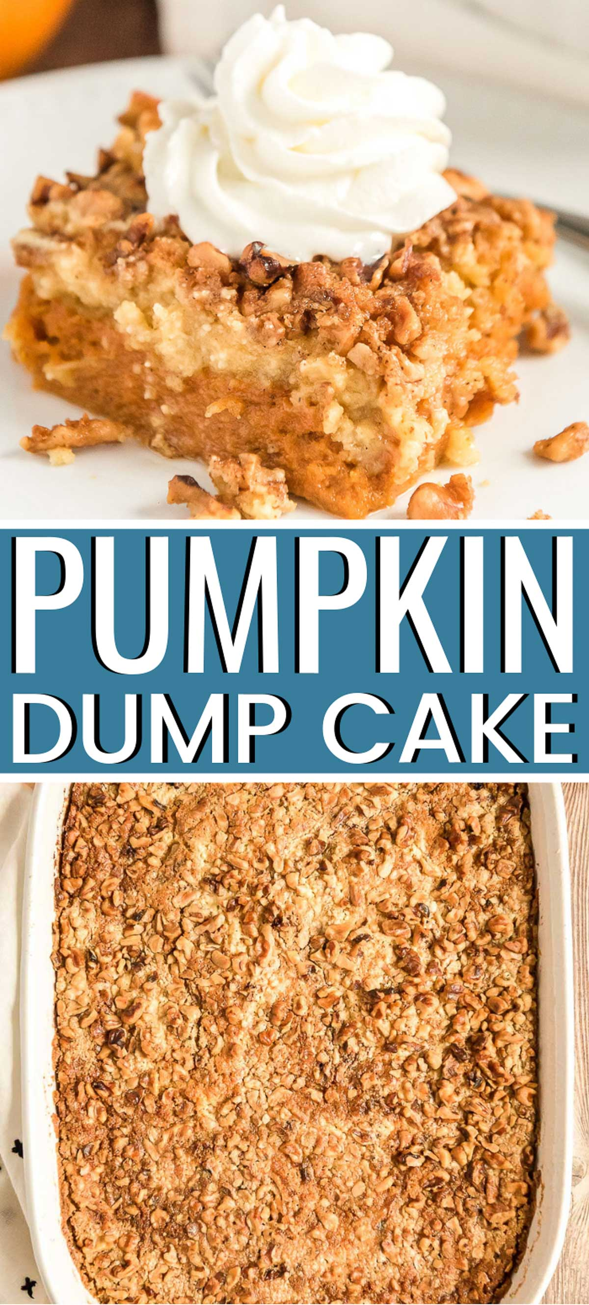 Pumpkin Dump Cake is the perfect fall dessert alternative to pumpkin pie! With a dense pumpkin base and a cake topping both loaded with Pumpkin Pie Spice and chopped nuts, this dessert's amazing layers will impress the whole family! via @sugarandsoulco