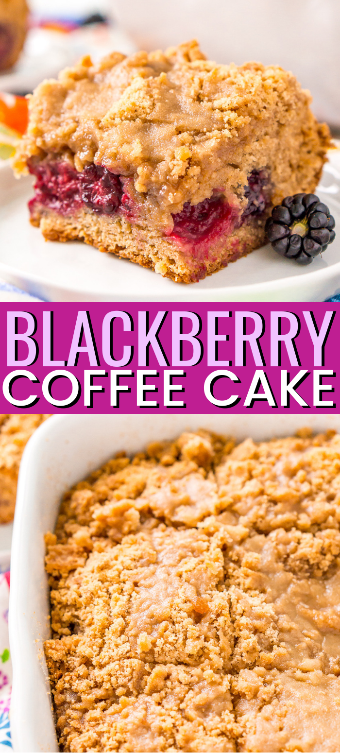 Blackberry Coffee Cake is a sweet breakfast cake loaded with brown sugar and a layer of fresh blackberries that are bursting with flavor! via @sugarandsoulco