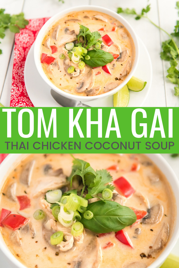 This Tom Kha Gai Soup recipe, also known as Chicken Coconut Soup, is an incredibly aromatic and flavorful Thai dish made with chicken, mushrooms, peppers, in a creamy coconut broth.