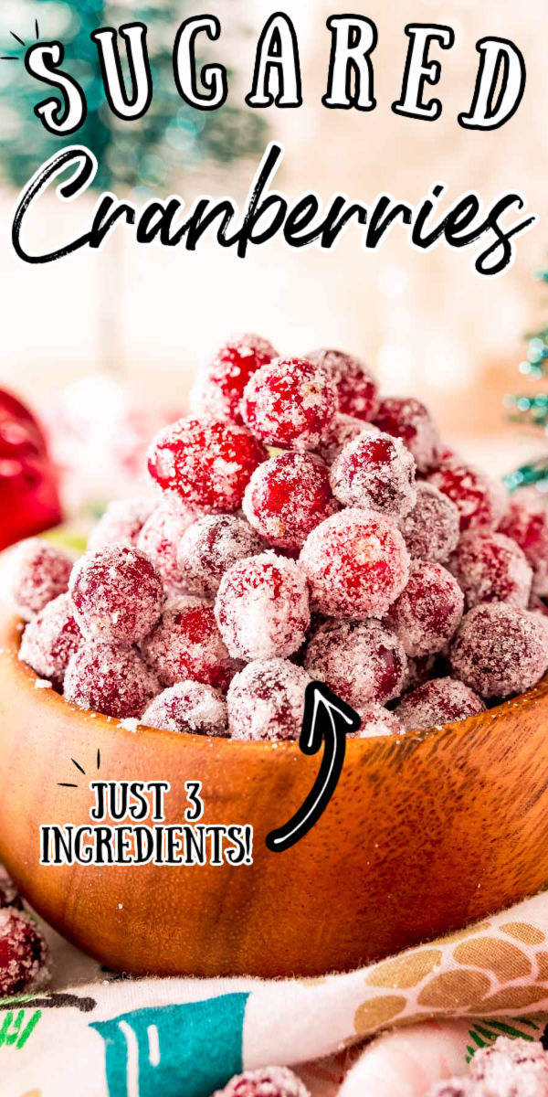 These Sugared Cranberries are so festive and easy to make right at home with just 3 ingredients! They can make any Christmas and Thanksgiving dessert or drink look impressive!!! via @sugarandsoulco