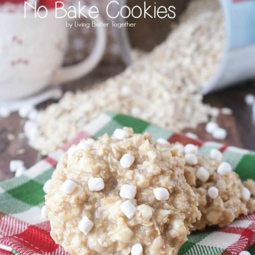 Oatmeal Recipes: White Hot Chocolate No Bake Cookies