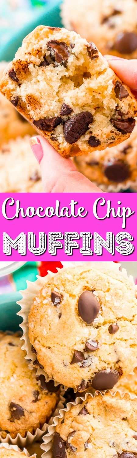 These Chocolate Chip Muffins are just the thing to start or end your day! A little dense and a little sweet, these cookie-like muffins are like eating dessert for breakfast! #chocolatechip #chocolate #muffins #breakfast #cookie #dessert #recipe