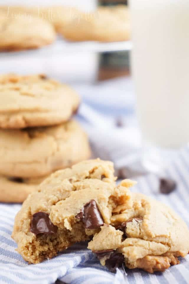 These Cookie Butter Chocolate Chip Cookies are laced with Speculoos Cookie Butter and loaded with chocolate chips. You won't be able to have just one or even five!
