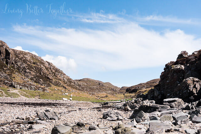 point-sleat-isle-skye-may-scotland (4 of 7)