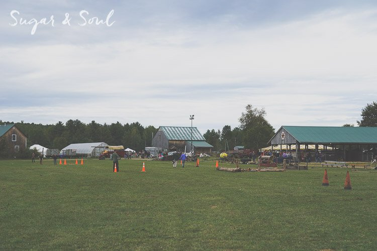The Maine Common Ground Fair is held every year in September in Unity, Maine. It's an agricultural fair with great food, animals, and educational attractions for the whole family!