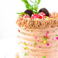 Peppermint Cocoa Cake Recipe