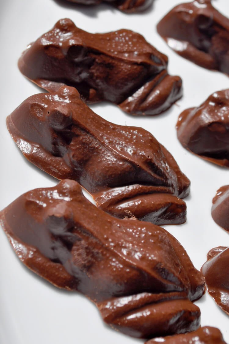 Chocolate-Frogs-1