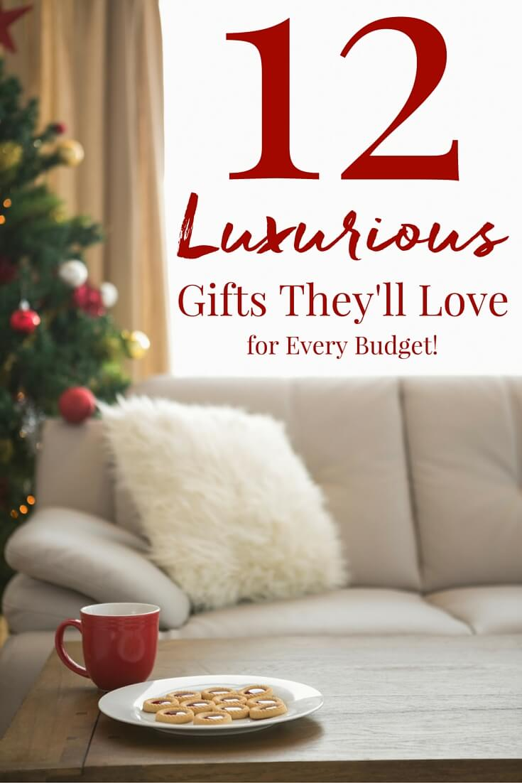 These 12 Luxurious Gifts are sure to impress without breaking that bank! From craft coffee brewers to homemade sugar scrubs, these gift ideas scream luxury!