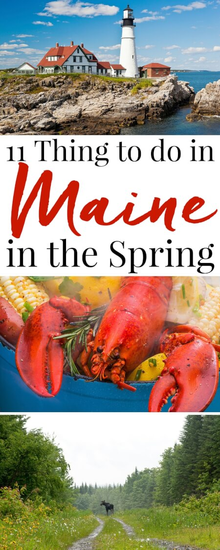 These 11 Things to do in Maine in the Spring will have you getting the most out of an off-season visit to the Pine Tree State! via @sugarandsoulco