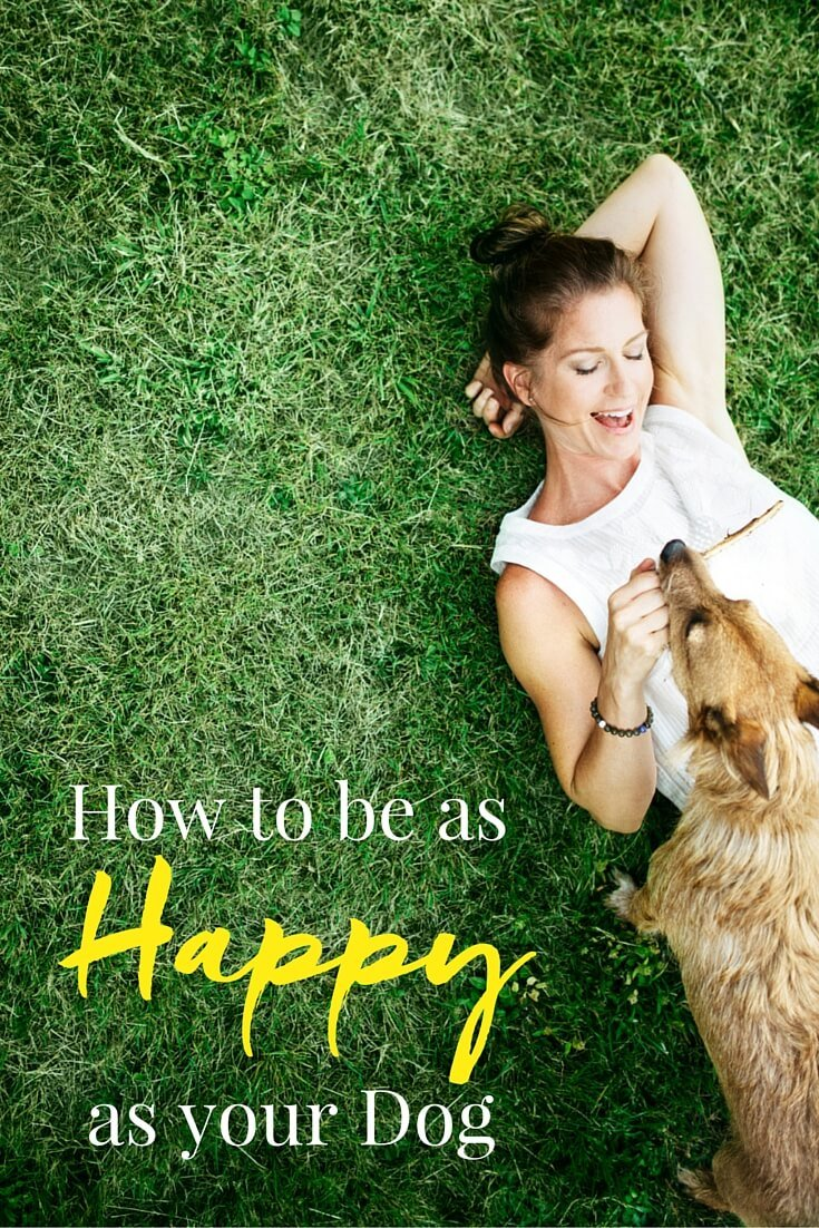"I'm sure you've heard the term ""Happy as a Dog"", here are some lessons from out furry friends on how we can lead happier lives."
