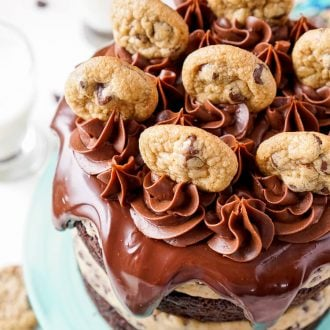 Close up photo of chocolate chip cookie dough cake