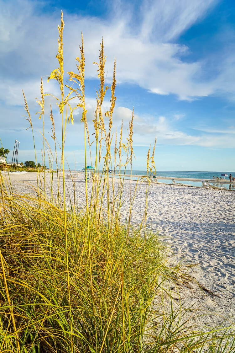 Anna Maria Island in Florida is the perfect vacation destination, a little sliver of heaven between Tampa Bay and the Gulf of Mexico.