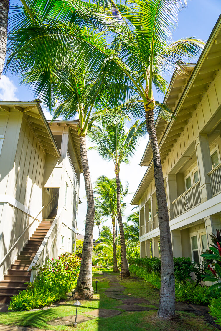 The Villas - These Things To Do In Kauai Hawaii are fun and exciting ways to explore and experience everything the island has to offer!