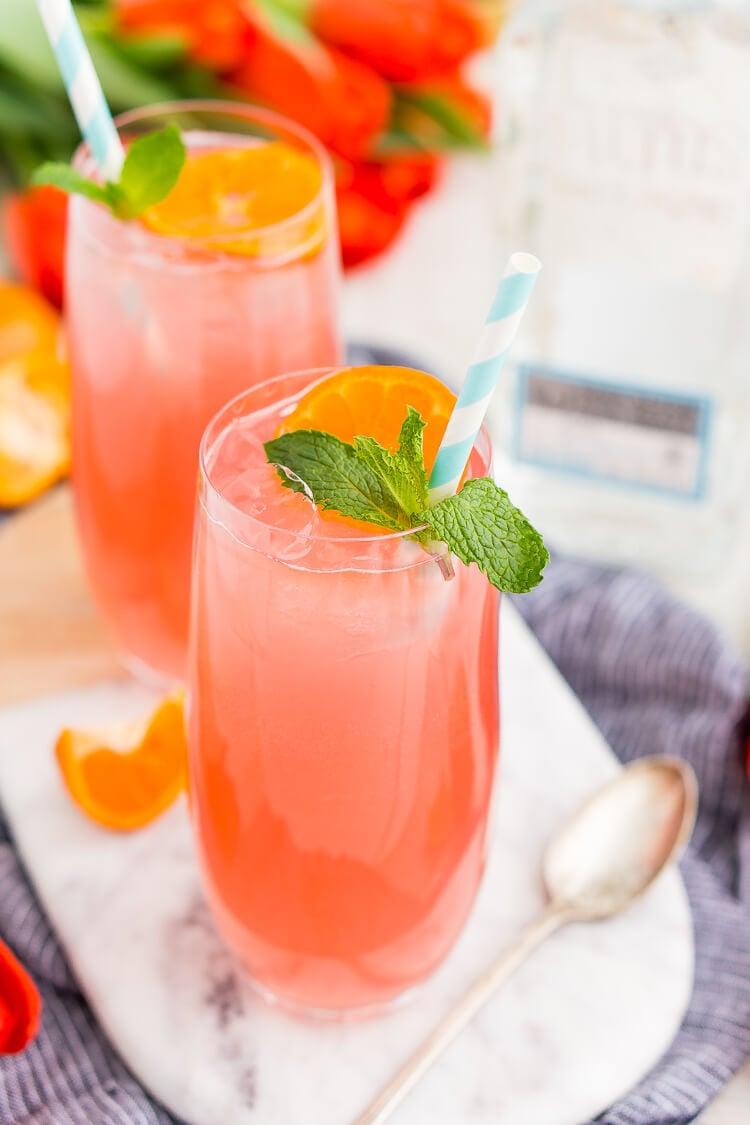 Cactus Cooler Tequila Cocktail | Sugar & Soul