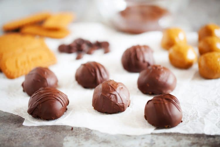 These Cookie Butter Balls are like classic peanut butter balls but made with cookie butter instead! An addition of graham crackers, sugar, and chocolate makes them a delicious holiday or everyday treat!