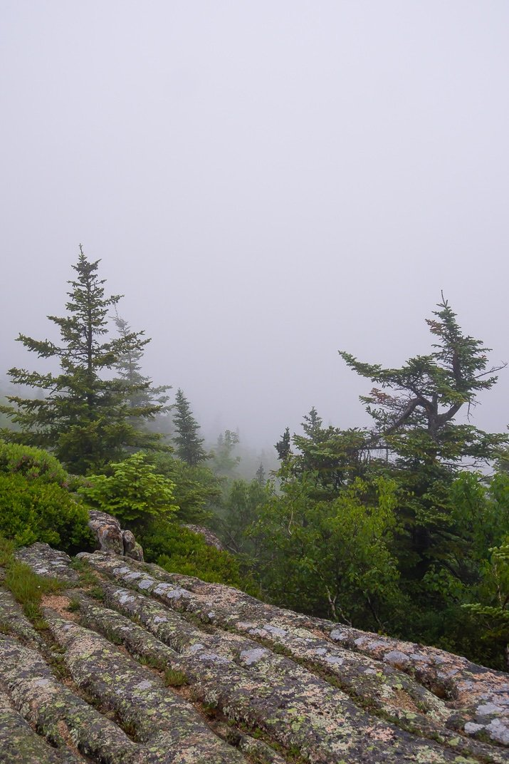 Planning a trip to Mount Desert Island? Make sure all of these fun things are on your itinerary while visiting Acadia National Park and coastal towns of Downeast Maine!
