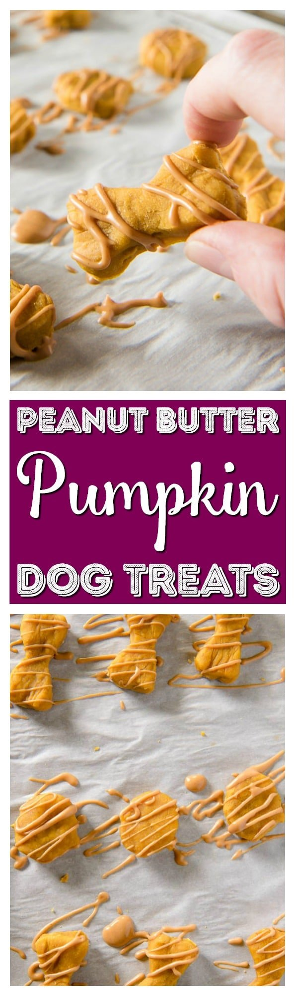 Why should humans get all the tasty fall desserts? Treat your pup to these homemade dog treats and let 'em revel in the season with you! via @sugarandsoulco