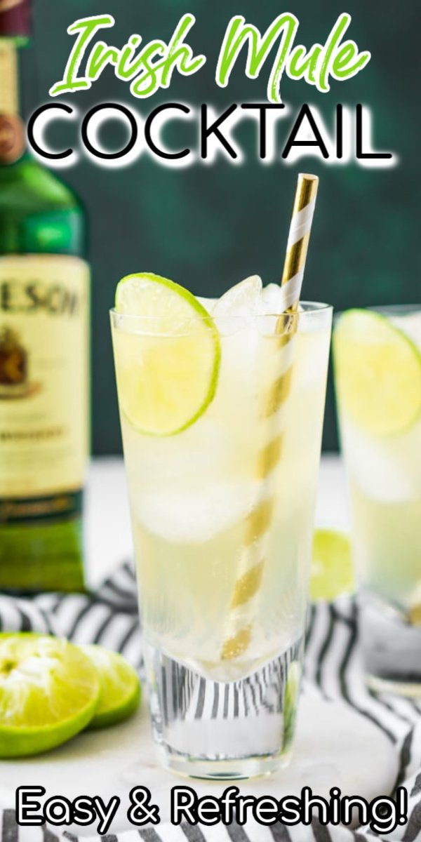 This Irish Mule Cocktail is a bright mix of smooth Irish whiskey, zesty ginger beer, and tart fresh squeezed lime juice and it's sure to make you want to dance this St. Patrick's Day! via @sugarandsoulco