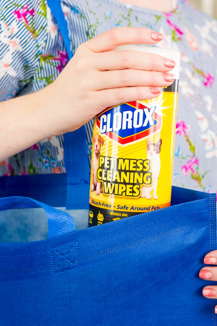 Spring Cleaning with Clorox Pet Mess Cleaning Wipes | Sugar