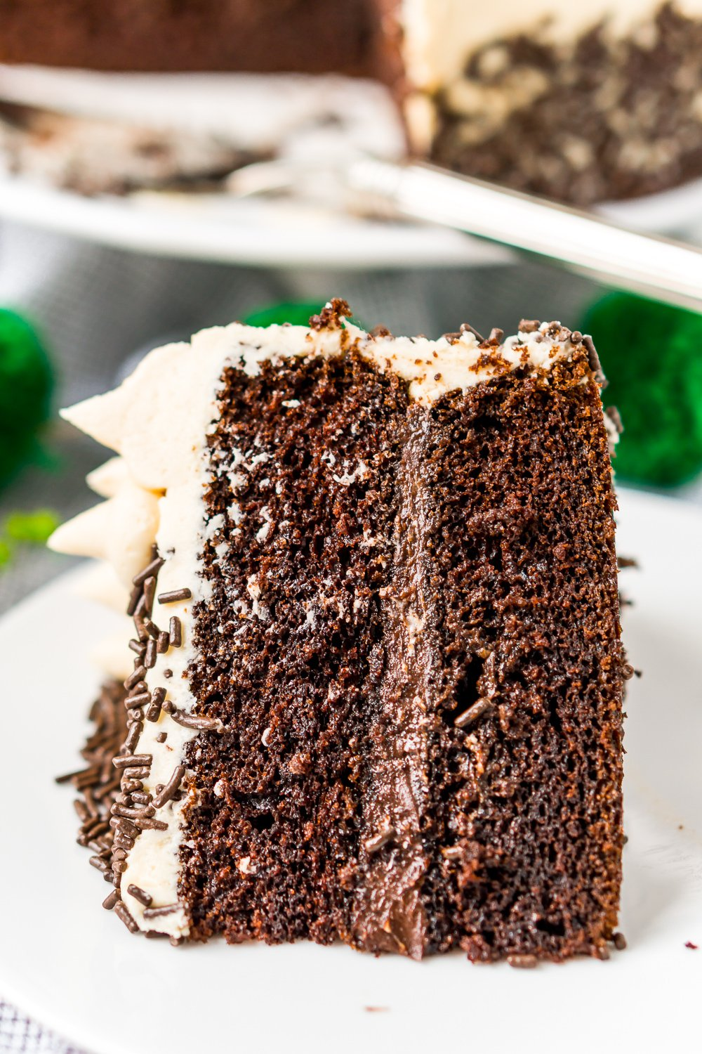 Close up photo of a slice of Chocolate Guinness Cake on a white plate.
