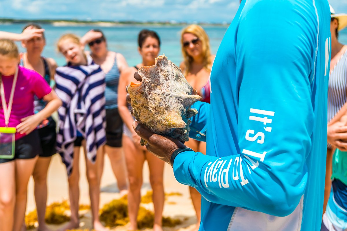Conch shell demonstration on the beach with a tour group.