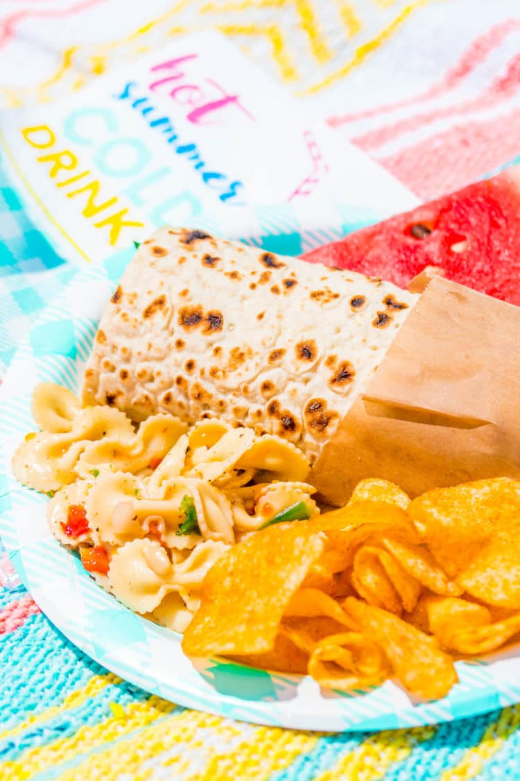 Plate with pasta salad, wrap, and potato chips on a picnic blanket.