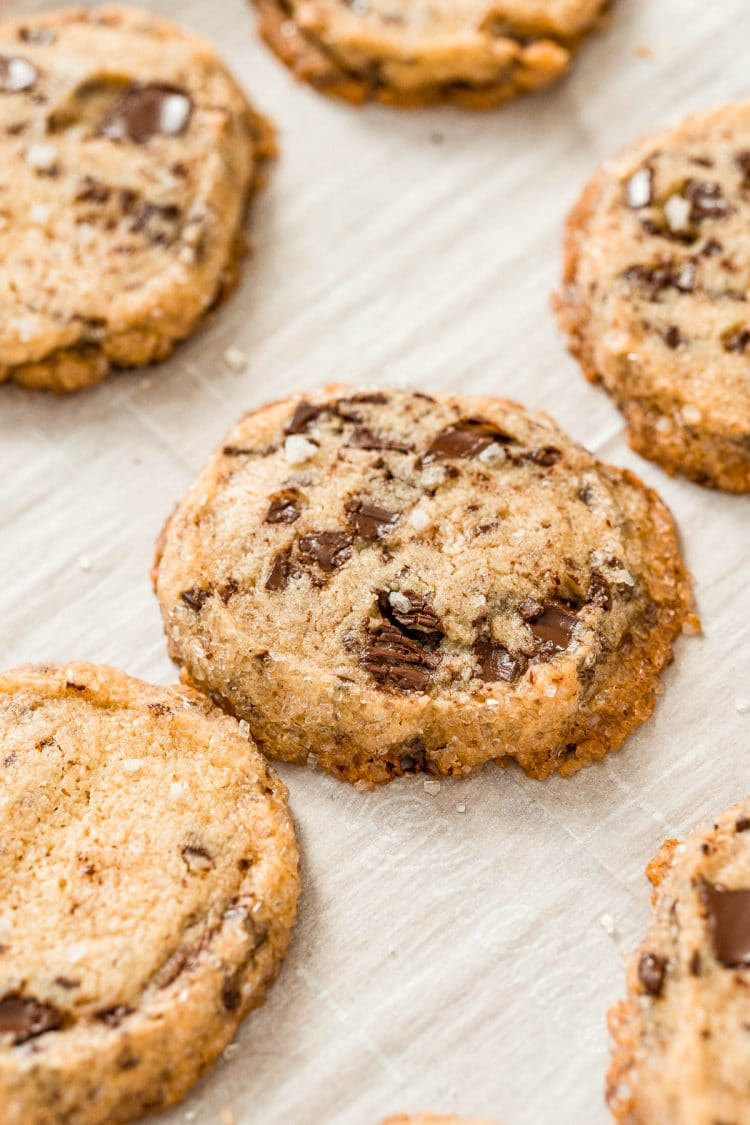 Close up photo of chocolate chip shortbread cookies.
