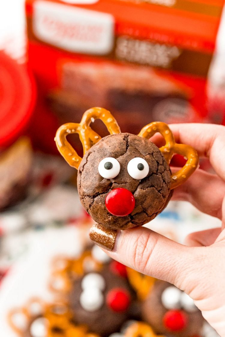 Woman's hand holding a reindeer cookie.