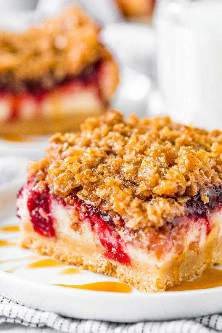 Close up photo of cranberry cheesecake bars.