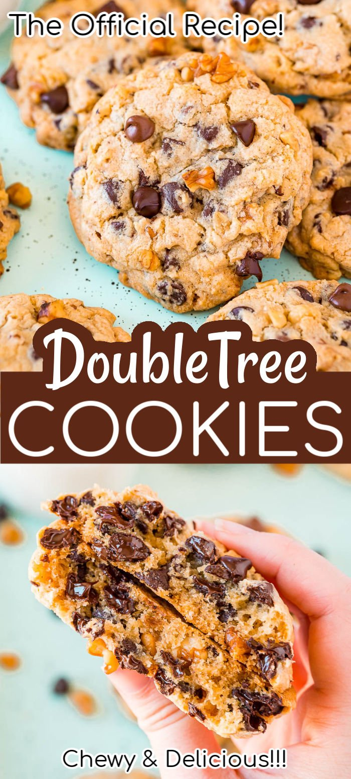 The official DoubleTree Cookie recipe that's loaded with chocolate chips, chopped walnuts, a hint of cinnamon, and a touch of lemon for a delightfully chewy and mouthwatering treat everyone is obsessed with!  via @sugarandsoulco