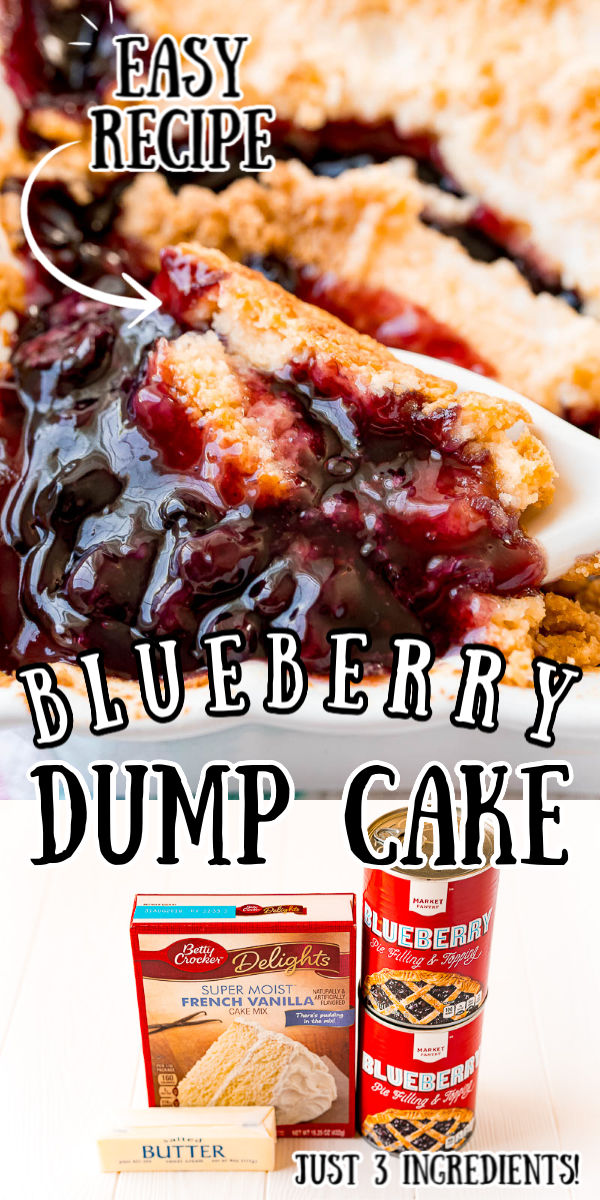 This Blueberry Dump Cake is an easy 3 ingredient dessert recipe that the whole family will enjoy! it's similar to a cobbler and perfect when topped with vanilla ice cream or whipped cream. via @sugarandsoulco