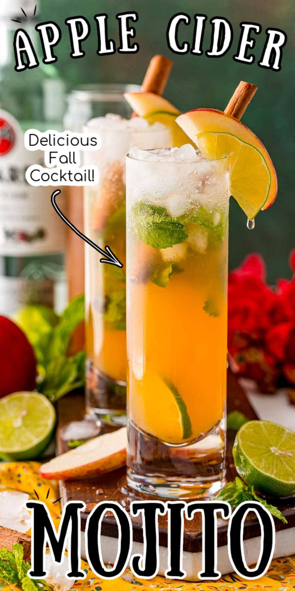 This Apple Cider Mojito recipe is my new favorite cocktail for fall! Spiced, vibrant, and slightly sweet, it has all the flavors of a classic rum mojito plus a hefty pour of apple cider. via @sugarandsoulco