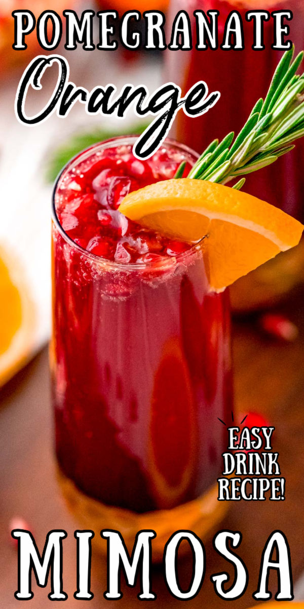 This Orange Pomegranate Mimosa is the perfect cocktail for any upcoming brunch dates. Made with Pomegranate juice, orange juice, and prosecco this is the perfect fruity drink to serve during your winter holiday get-togethers! via @sugarandsoulco