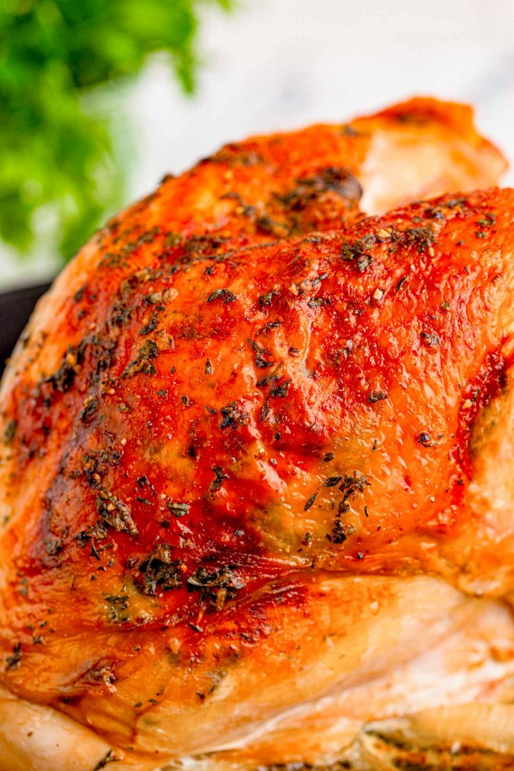Close up photo of an oven roasted turkey breast.