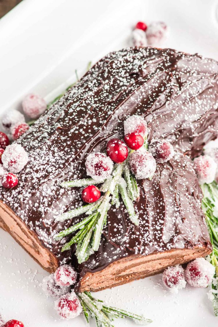Overhead photo of a yule log cake on a white serving platter.