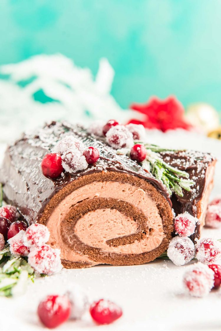 Close up photo of a yule log cake on a white plate.