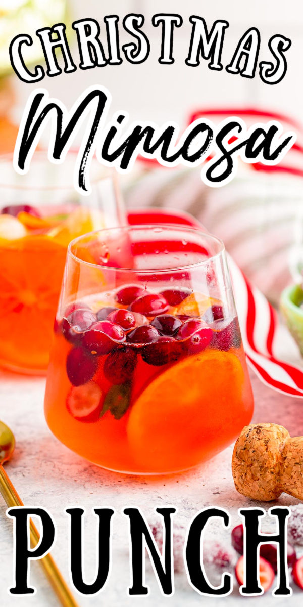 If you're looking for a deliciously easy drink recipe for the upcoming holiday season then this Christmas Mimosa Punch is exactly what you are looking for. It's fruity, easy, and serves a bunch so it's perfect for a Christmas brunch. via @sugarandsoulco