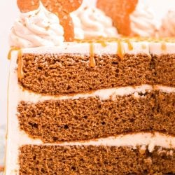 Close up photo of a three layer gingerbread cake that have been cut into.
