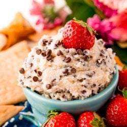 Close up photo of a teal bowl filled with cannoli dip surrounded by crackers and strawberries.