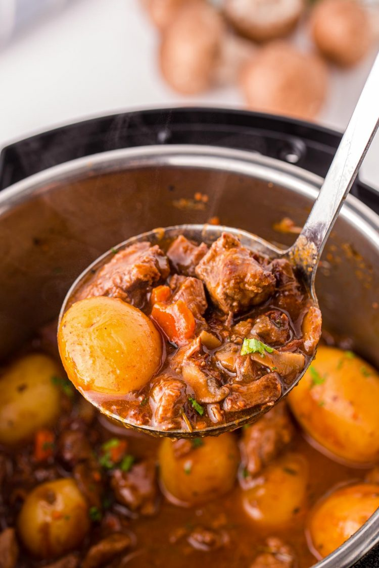 Close up photo of a ladle filled with beef bourguignon in front of an instant pot.