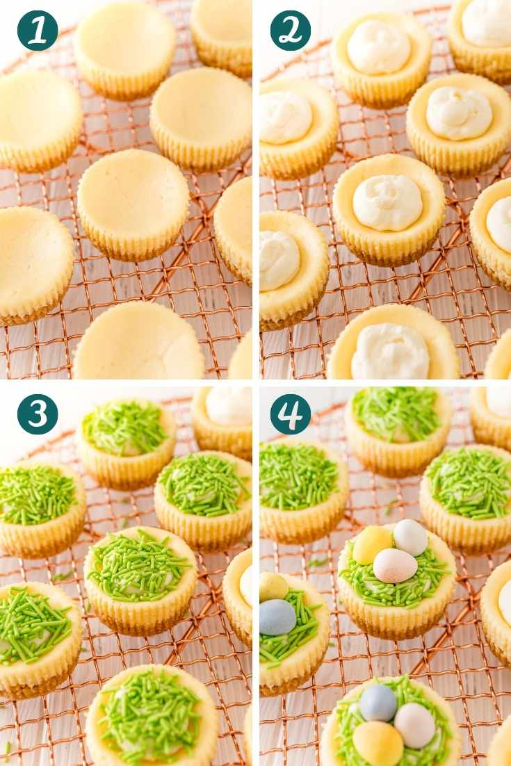 Step by step photo collage showing how to make easter cheesecakes.