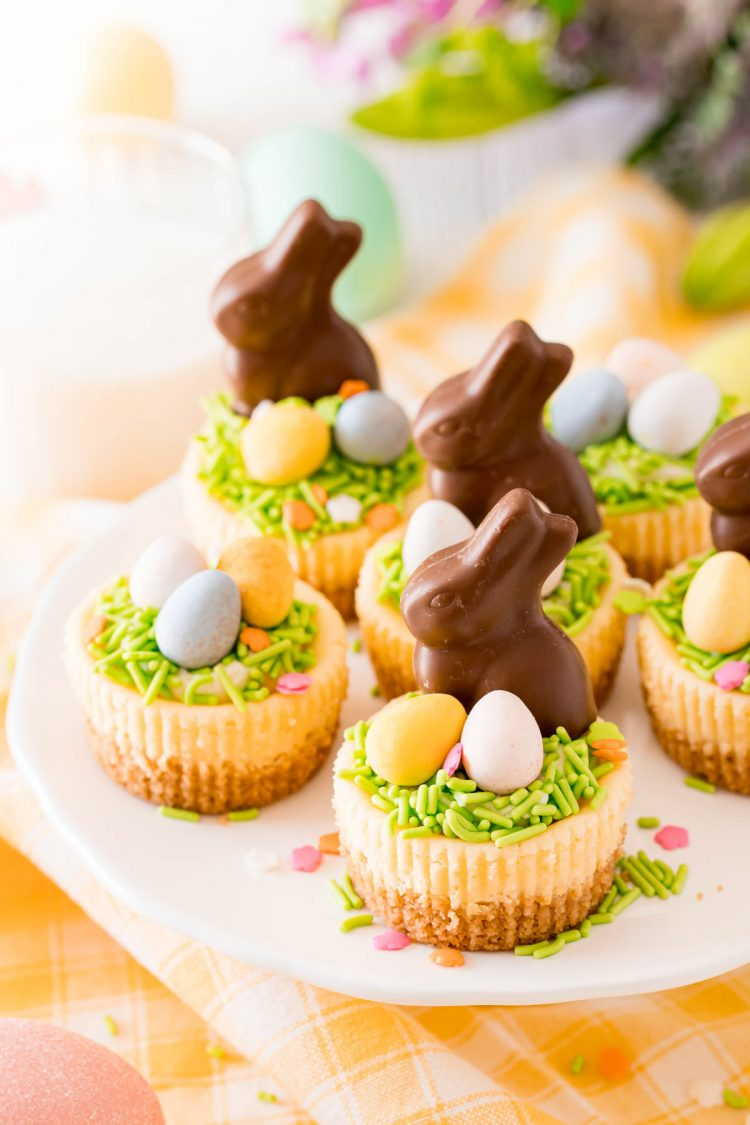 Mini Easter cheesecakes on a white cake stand topped with chocolate bunnies.