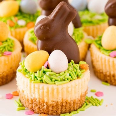 Close up photo of a mini cheesecake topped with green sprinkles, mini cadbury eggs, and chocolate bunny.