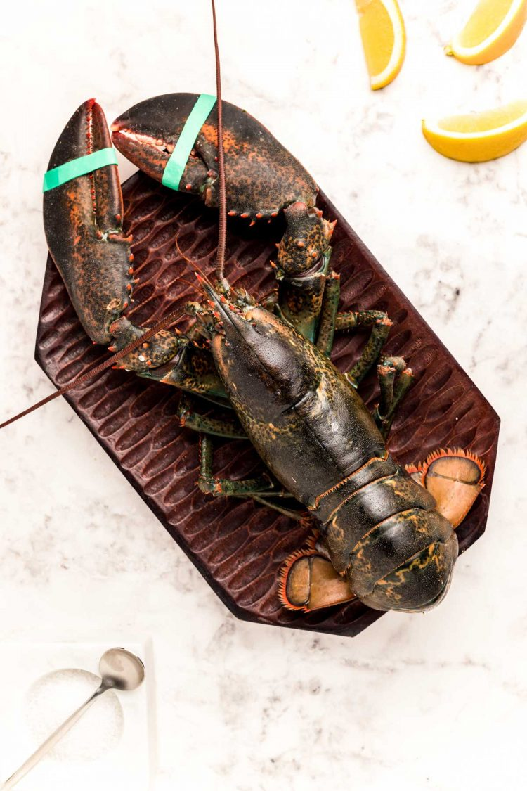 Overhead photo of a live lobster on a cutting board ready to be cooked.