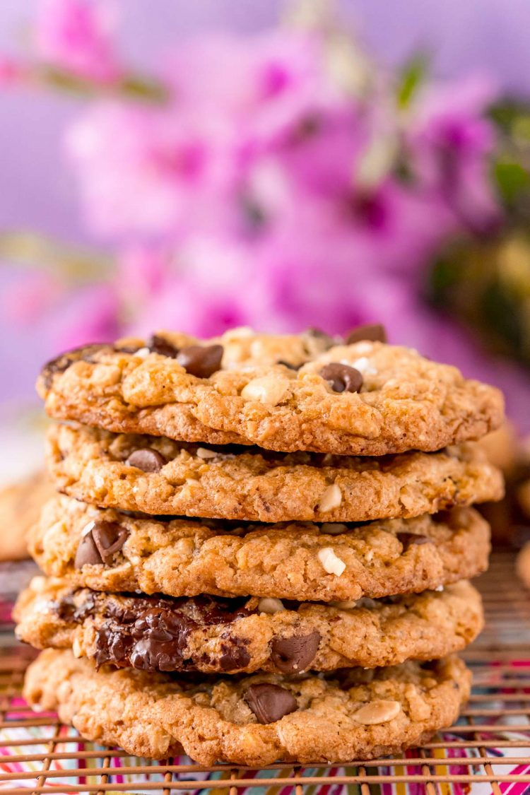 Straight on photo of a stack of five ranger cookies.