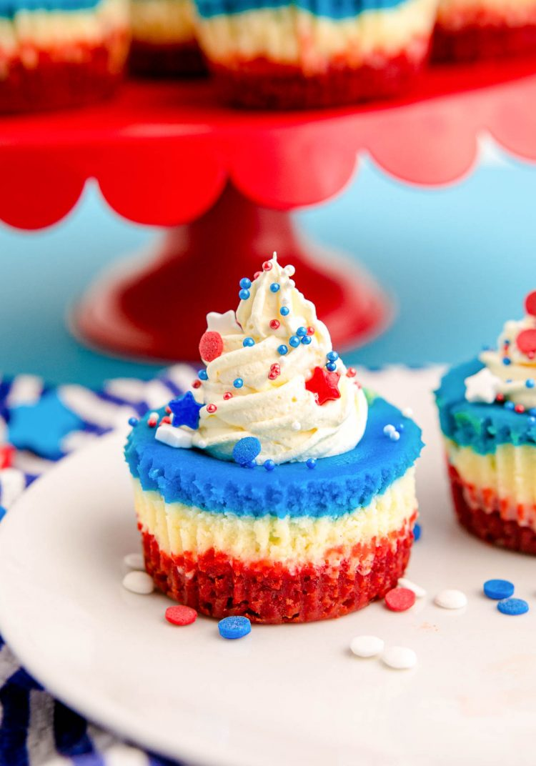 Close up photo of 4th of July mini cheesecakes on a white plate with sprinkles around them.